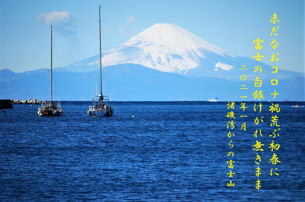 三浦より富士山を望む